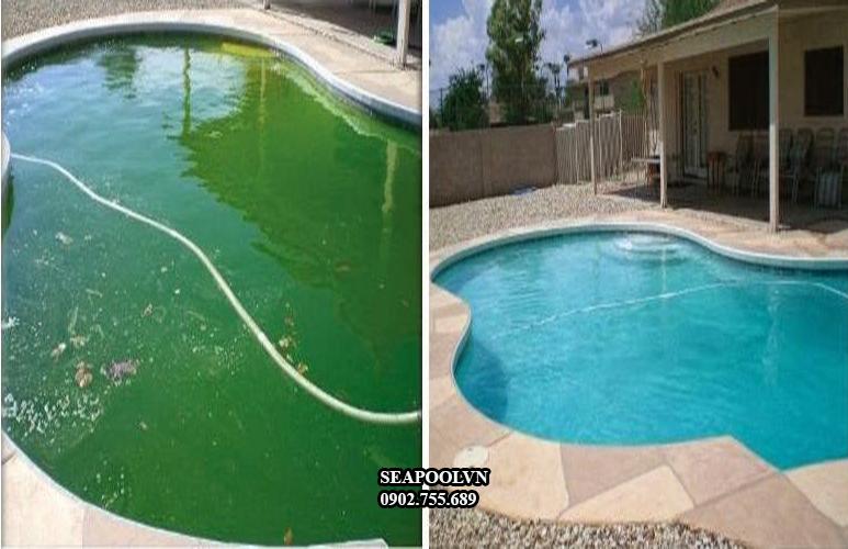 Hóa chất diệt rêu hồ bơi